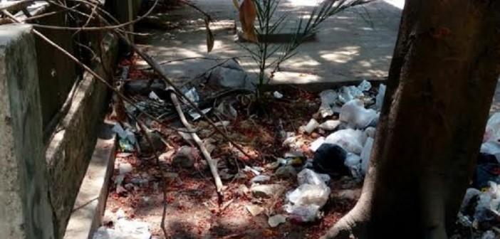 القمامة تحاصر سفارة جنوب السودان بالمعادي (صور)