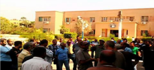 اعتصام عمال بـ«سماد السويس» للمطالبة بصرف علاوة غلاء (صور)