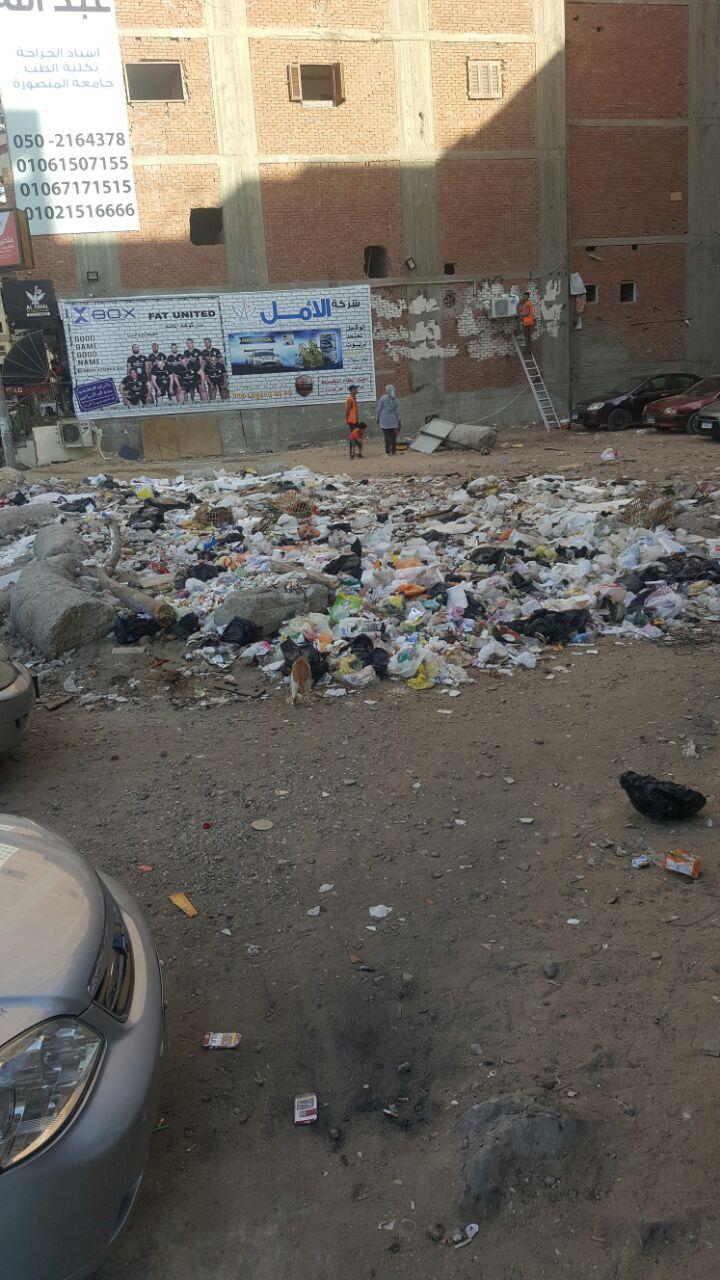 سكان في حي غرب المنصورة يطالبون برفع القمامة من الشوارع