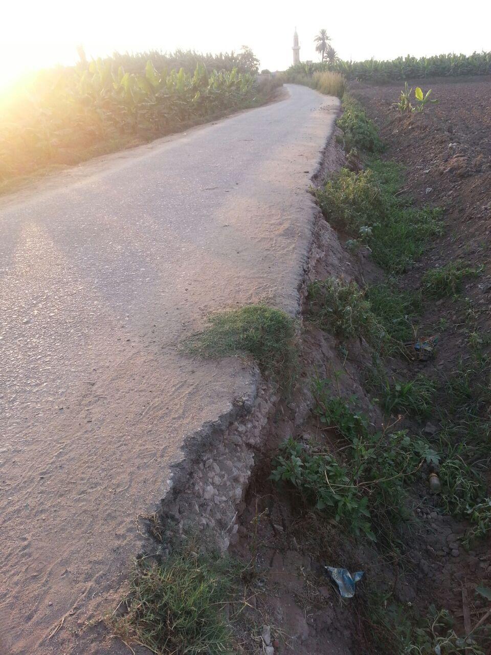 تحذيرات من تآكل طريق رئيس يربط عزب بالبحيرة (صور)