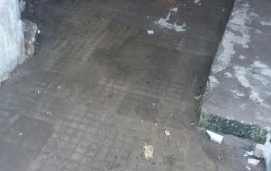 صور.. مياه الصرف تحاصر «مساكن الناصرية الجديدة» بالإسكندرية