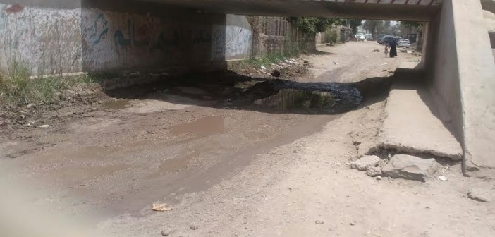 مواطن يحذر من سقوط كوبري بـ«الزقازيق»: المياه تحاصره وجدرانه تآكلت..(صور)
