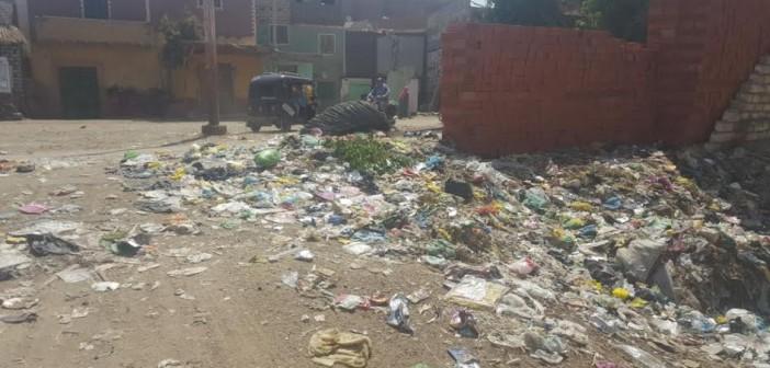 أهالي «طحا الأعمدة» يشكون تجاهل رفع القمامة من شوارع القرية (صور)