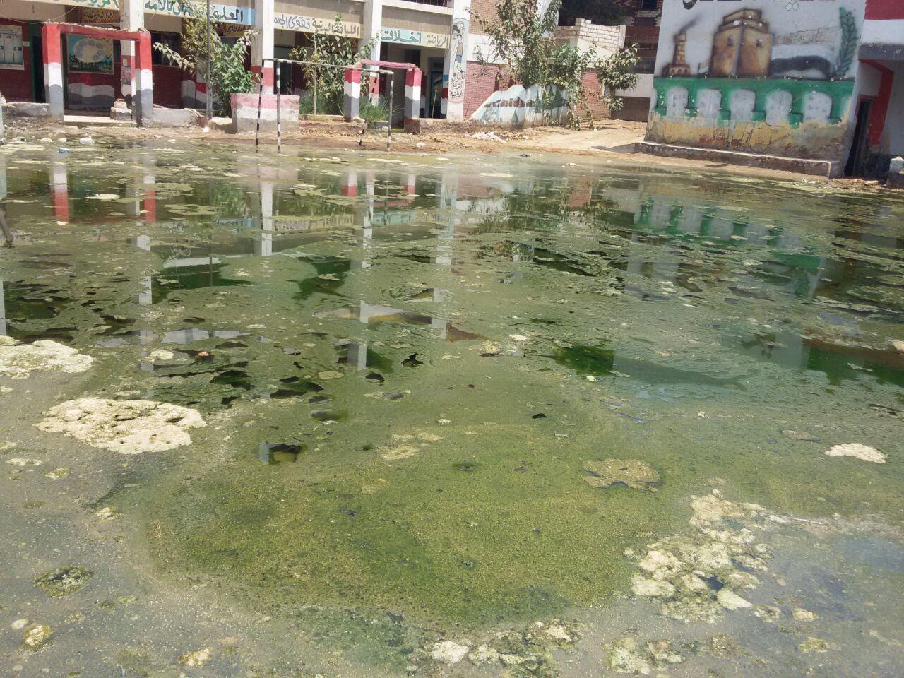 غرق قريتين في بني سويف في مياه الصرف الصحي (صور)