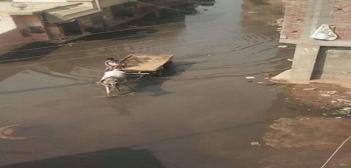 طفح الصرف في «عزبة صقر» بالسنبلاوين مشكلة دون حل منذ سنوات