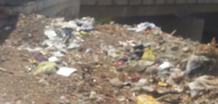 أهالي «بنجا» يطالبون بتنظيف شوارع القرية وتشجيرها..(صور)