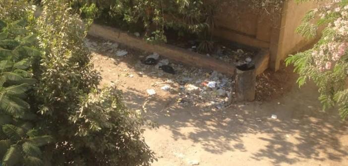 مواطن يشكو من القمامة بشوارع حدائق الأهرام (صور)