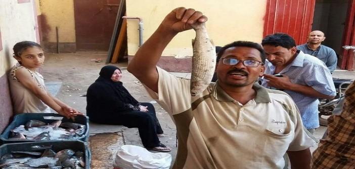 «صُنع في ميت غراب».. حملة شبابية لمكافحة الغلاء بإحدى قرى الدقهلية
