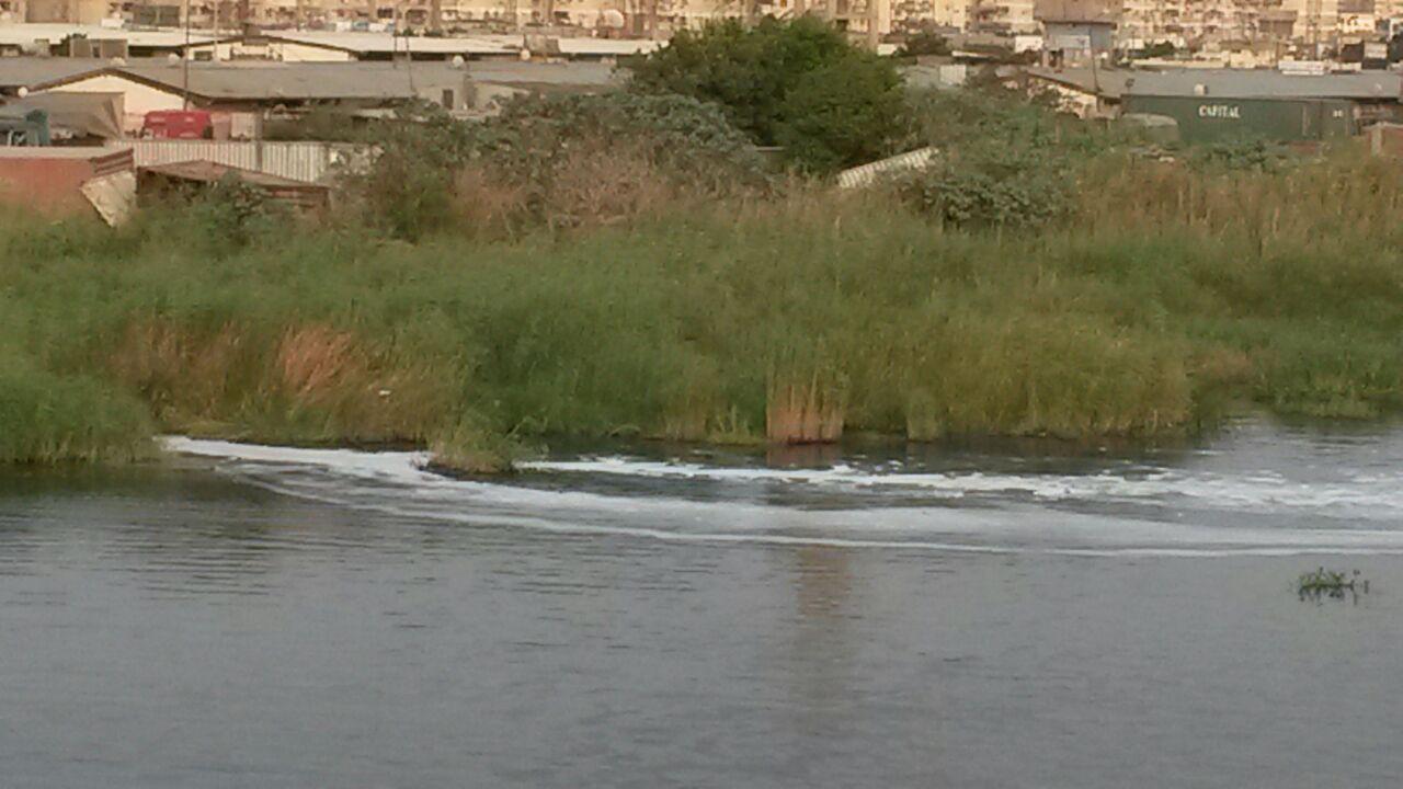 صرف صحي على ضفاف بحيرة المنزلة ببورسعيد