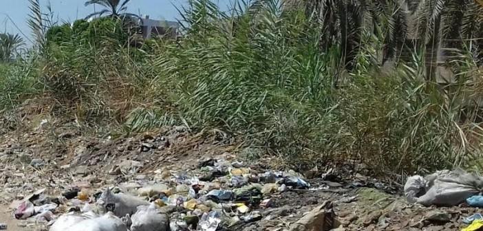 مطالب بتطهير ترعة قرية «أولاد عليو» بسوهاج (صور)