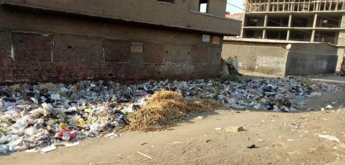 مطالب بفتح شارع رئيسي بـ«بنها»: مُغلق بسبب القمامة (صور)