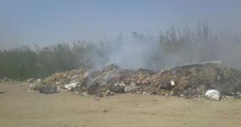 سكان قرية بالمنيا يطالبون بتعزيز خدمات النظافة