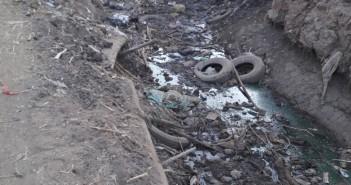نقص مياه الري في «بلفيا» في بني سويف (صور)