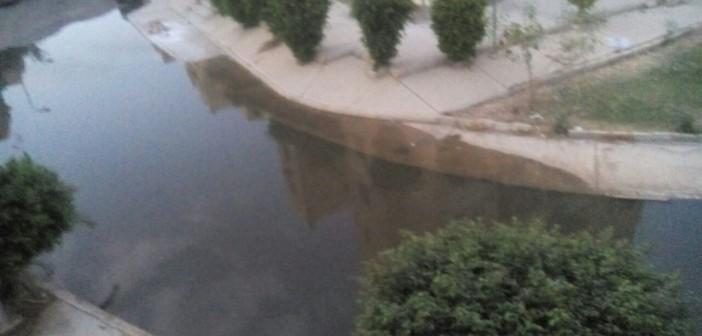 طفح مياه الصرف في مناطق بالحي 16 في مدينة الشيخ زايد (صور)