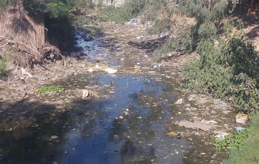 استغاثة مزارعي «فزارة» بالبحيرة: الأرض عطشانة.. والترعة مفيهاش مية (صور)