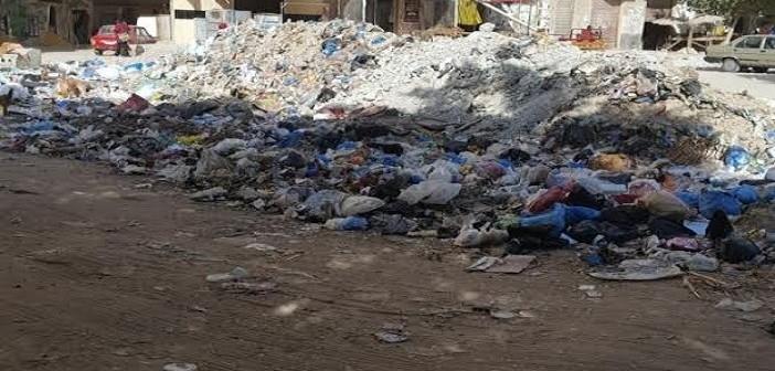 «الرصد البيئي» بالإسكندرية: وجهنا مسؤولي النظافة برفع مخلفات «الجزيرة الخضراء»
