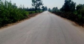 مطالب بإنارة طريق حيوي يخدم 42 قرية بالدقهلية