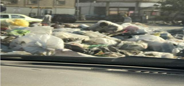 سكان شارع «أحمد الزمر» بمدينة نصر يطلبون رفع القمامة.. وتجميل الحي العاشر (صور)