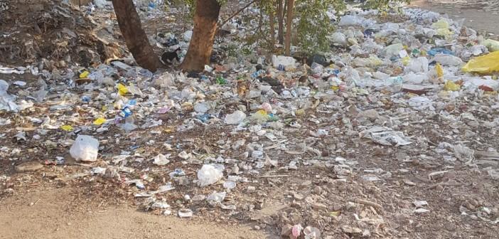 تحول حديقة إلى مقلب قمامة وجراج عشوائي شرق مدينة نصر (صور)