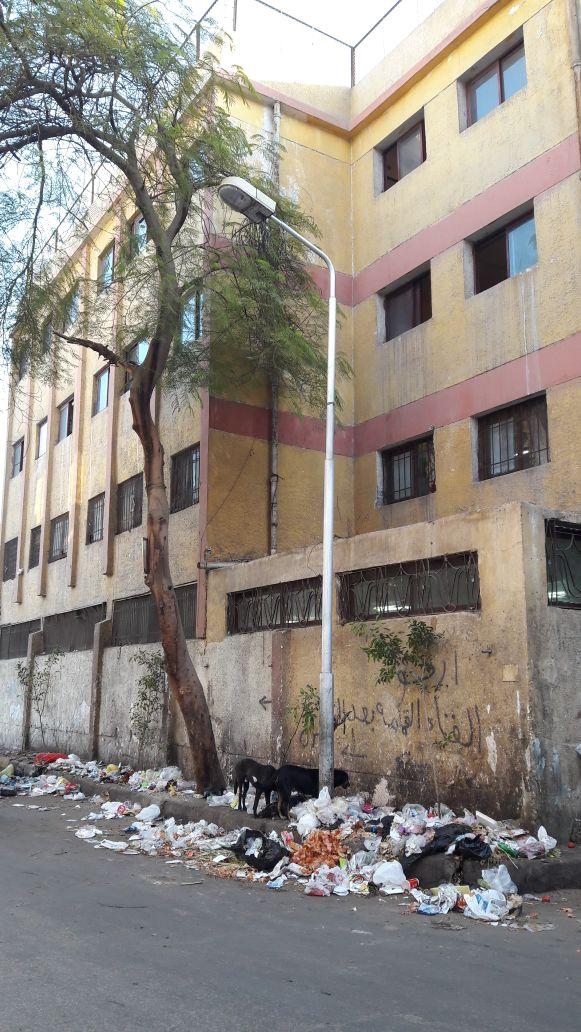 صور.. تجمعات مُستمرة للقمامة أمام مدرسة بالعجوزة