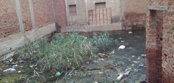 طفح الصرف في شارع بـ«كوم اشفين» بالقليوبية (صور)