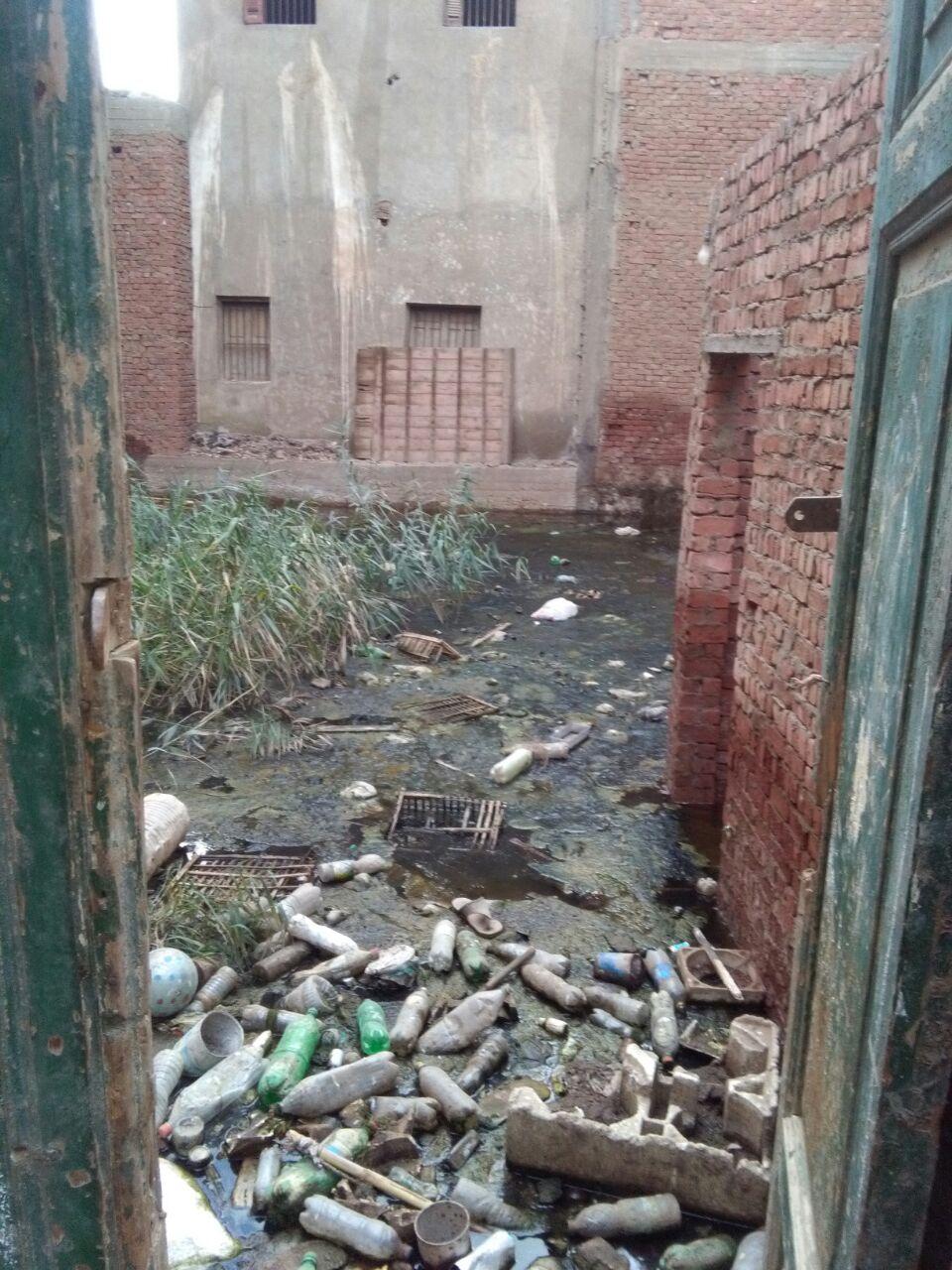 طفح الصرف في شارع بـ«كوم اشفين» بالقليوبية