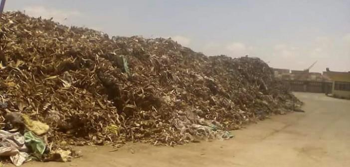 أهالي «زاوية عبدالقادر» بالعامرية يطالبون بنقل مصنع لأعلاف الدواجن (صور)
