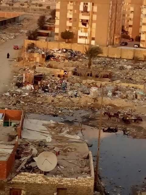 مطالب بإنارة شوارع «مساكن الزهراء» و«عرب المعمل» بالسويس