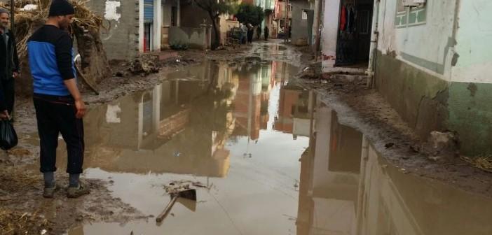 غرق شوارع «جعيف» بالبحيرة في مياه الأمطار