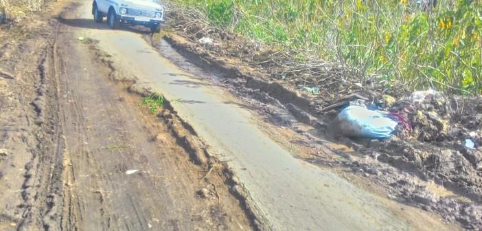 أهالي «الريفي» كفر الشيخ يطالبون بتجديد الطريق الرئيسي للقرية