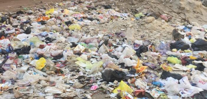 استياء بسبب انتشار القمامة في شوارع «بنها الجديدة»..(صور)